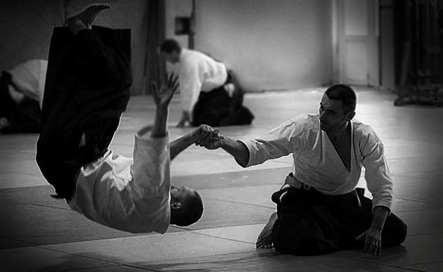 aikido-trainer